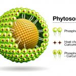 10 ưu điểm của sản phẩm công nghệ phytosome