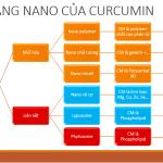 Các dạng nano của Curcumin và cách đánh giá phân biệt