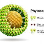 Tại Việt Nam đã có Nghiên cứu bào chế phytosome curcumin