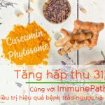 Curcumin phytosome – công nghệ có sinh khả dụng tối ưu trên người