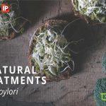 điều trị h pylori, Helicobacter pylori, điều trị tự nhiên không dùng thuốc