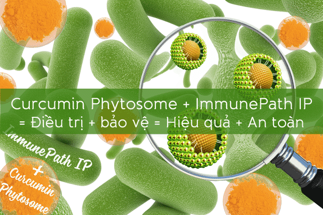 Kukumin IP, kukumin, kurkumin, kukuminip, trào ngược dạ dày, ợ hơi, đầy hơi, trào ngược thực quản, khó tiêu, viêm loét dạ dày, trào ngược, thuốc dạ dày, curcumin, curcumin phytosome, immunepath IP,