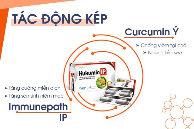 curcumin Ý, curcumin phytosome, tác động kép, Kukumin IP, Immunepath IP