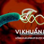 Nhiễm khuẩn Hp sử dụng Kukumin IP có tốt không?