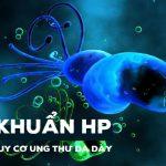 Mối liên hệ giữa nhiễm khuẩn Hp và ung thư dạ dày